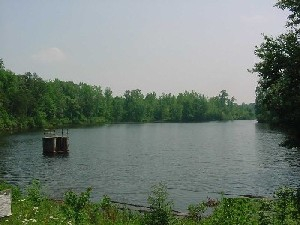 Horsepen Lake Wildlife Management Area