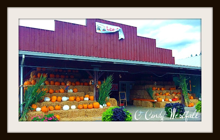 Lee Farms Tualatin, OR