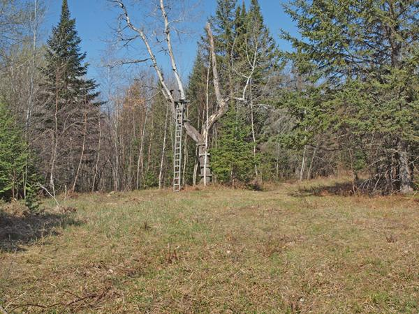 New price 285 000 129 acres private hunting land on for Permanent tree stand