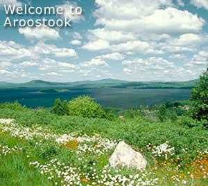 land in maine for sale cheap me acreage can mean one acre