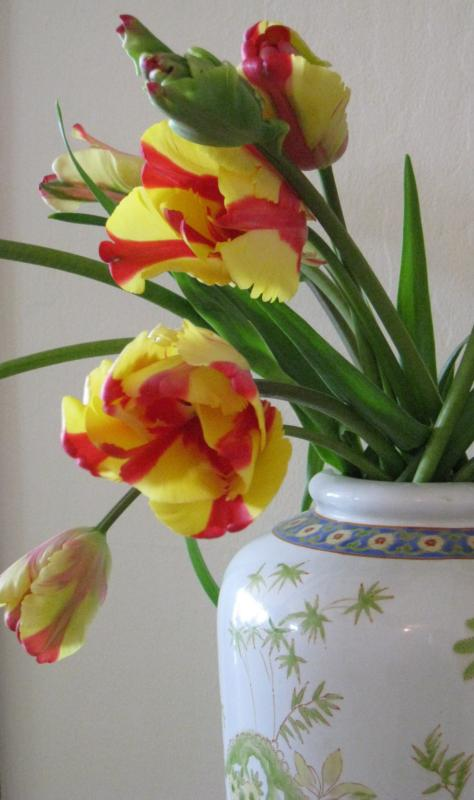 Thank-You Tulips for Active Rain - Leslie Olson Interiors