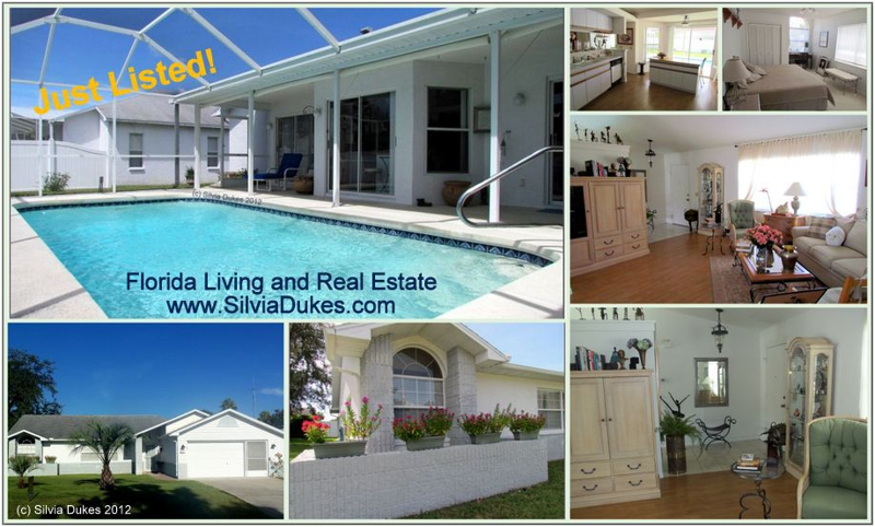 spring hill pool home for sale realtor silvia dukes