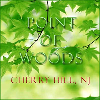 Point of woods cherry hill nj by leander mcclain realtor