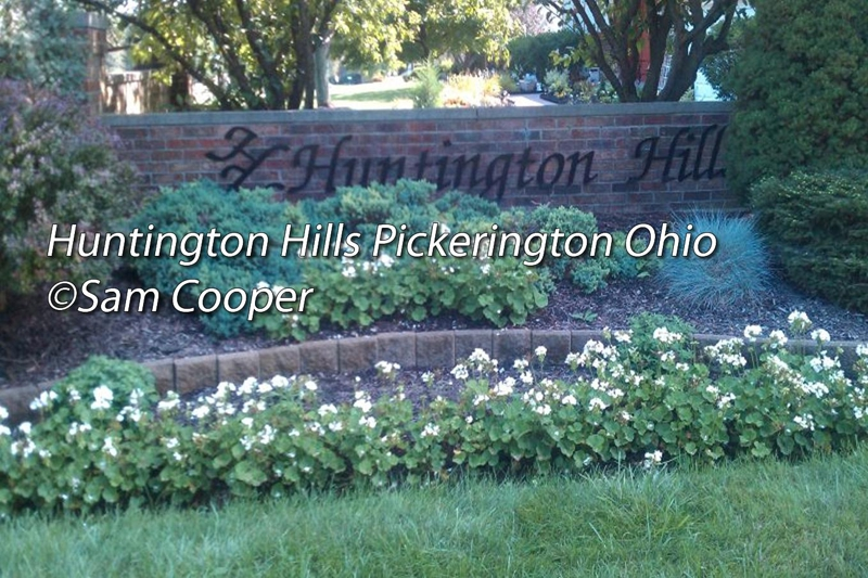 Huntington Hills Pickerington Ohio,Recent Home Sales