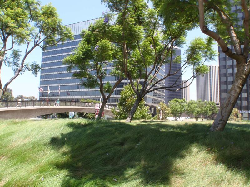 Luxury Condominiums in Century City