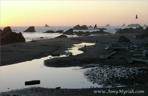 Harris Beach Brookings Oregon