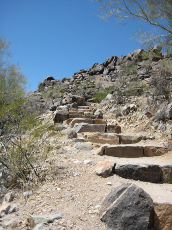 Trail at Signal Hill in Tucson Mountain Park