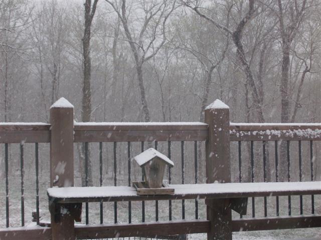 Again??? St  Louis Missouri Weather March 26, 2011