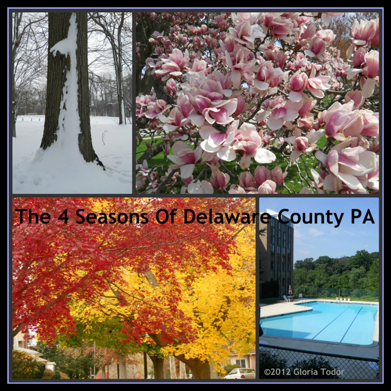 real estate delaware county pa