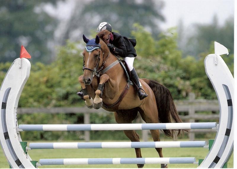 horse juping