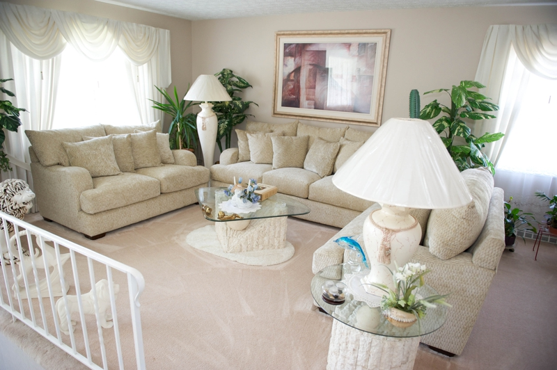 2854 Briggston Ave Living Room