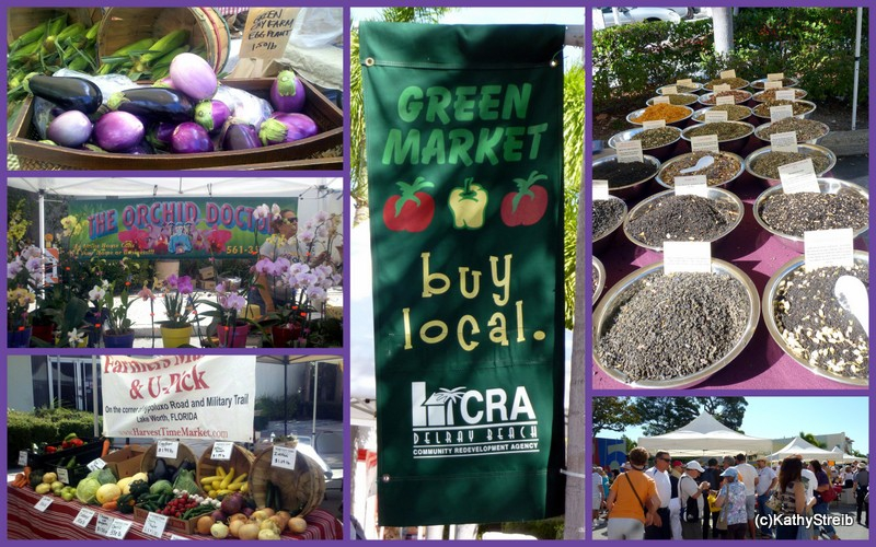 the delray beach green market