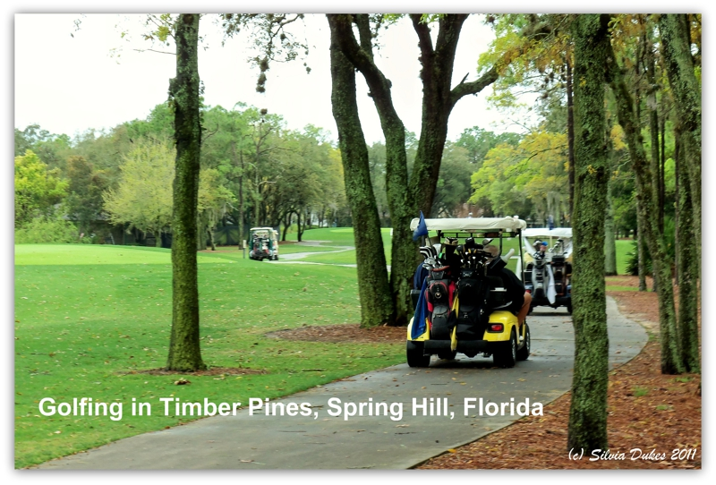 active adult communities spring hill fl
