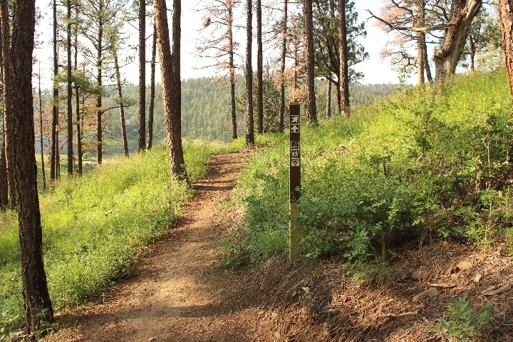 Grindstone Canyon Trail - Ruidoso, NM