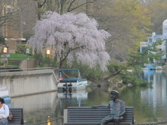 Lake Anne in Spring Reston VA