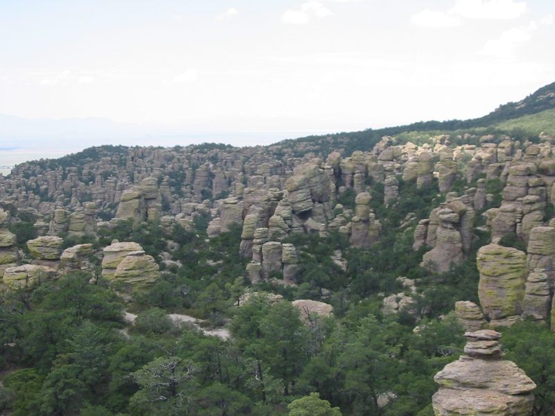Coronado National Forest and Chiricahua National Monument