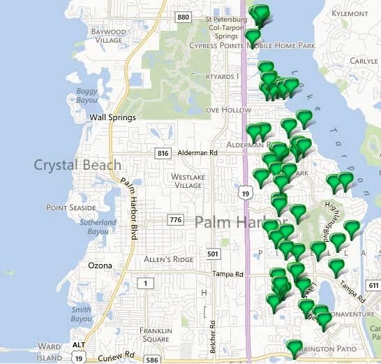 Palm Harbor Florida 34684 - Homes for Sale - May 2013