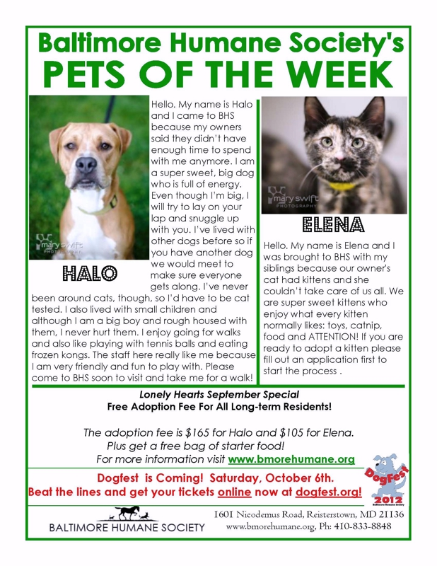BHS Pets of the Week