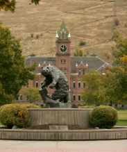 university of montana, jobs, investors, immigration