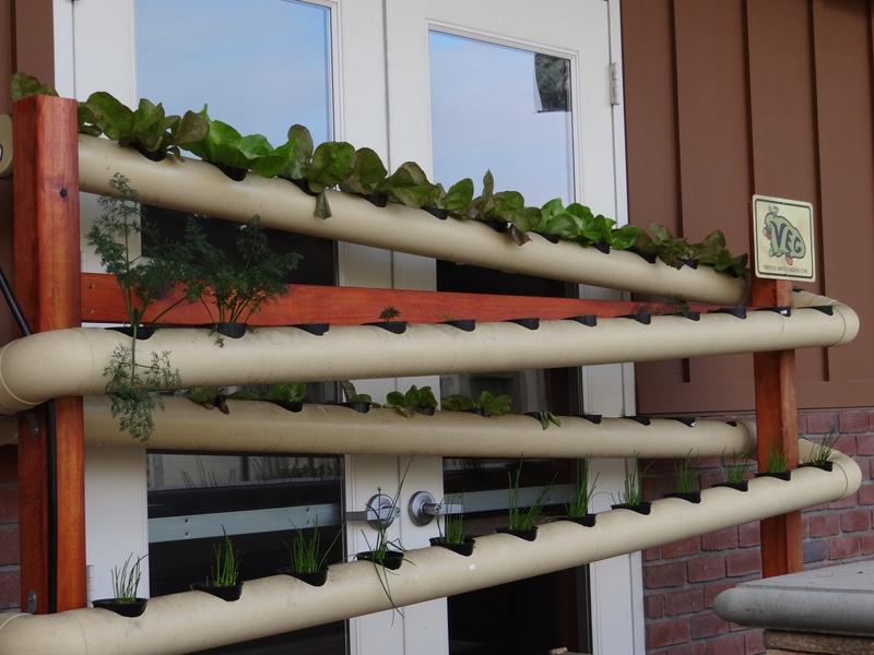 Jardin Vertical Bogota Jardin Vertical Activo