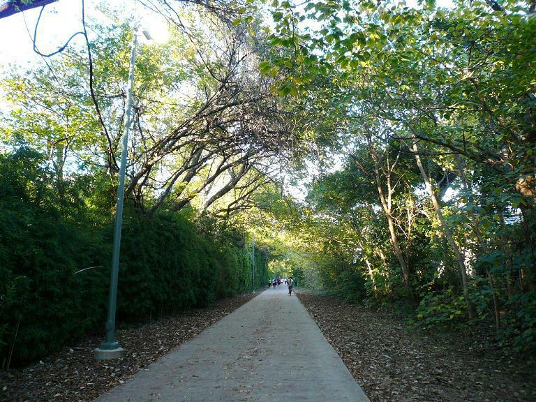 Dallas' Katy Trail: The Road to a Healthier and More ... Katy Trail Dallas