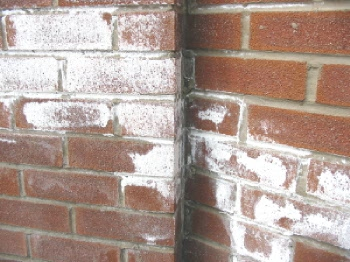 What S That White Stuff On My Bricks
