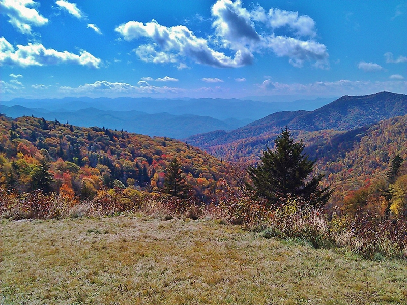 Fall Colors in Franklin, NC