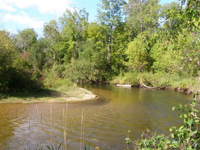 Cheboygan County Sturgeon River Land For Sale --- Northern