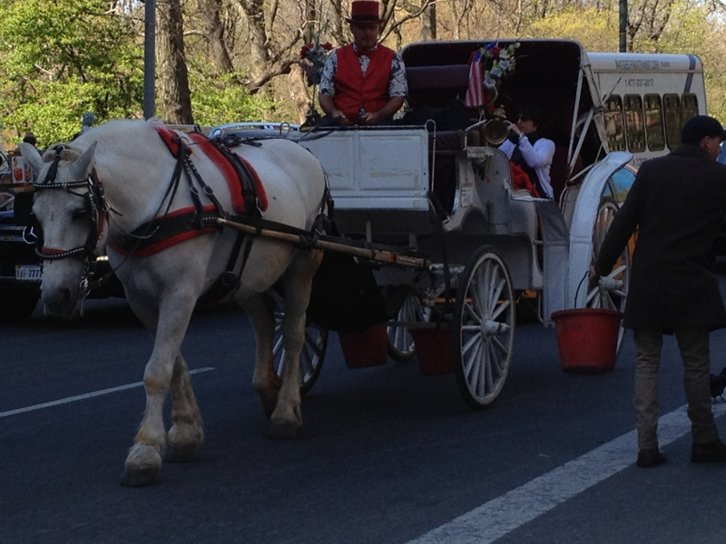 Handsome Carriage Easter Sunday 2012