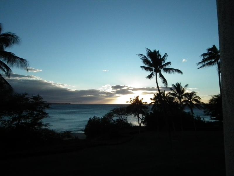Hawaii Christmas 2011