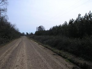 Land For Sale In Morehouse Parish Louisiana