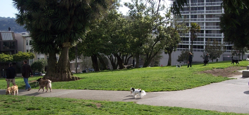 Lafayette Park Dog Play Area