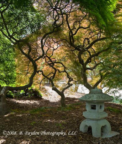 Norfolk Botanical Garden Norfolk Va Localism