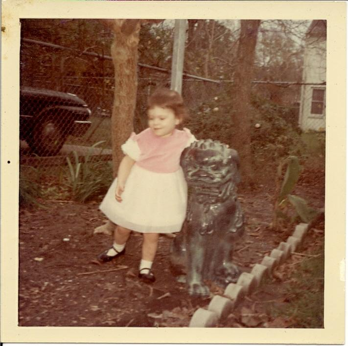 Memories Of My 1960 39 S Childhood Growing Up In Houston 39 S Old Braeswood Neighborhood