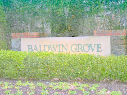 Reston's Baldwin Grove Community-awesome location