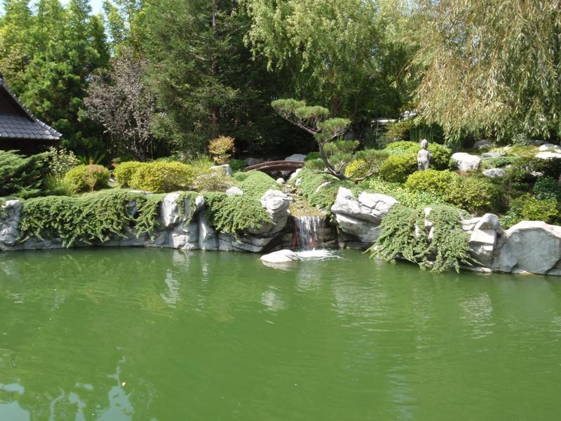 Japanese Garden of Paula Kent Meehan