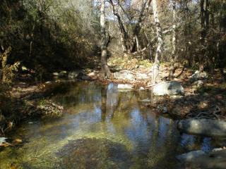 Hurst Creek Lakeway Texas