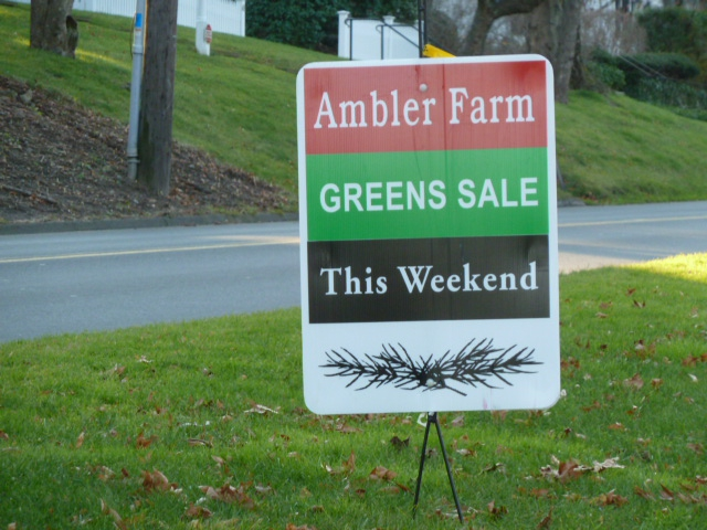 Ambler Farm Wreaths and Trees in Wilton CT