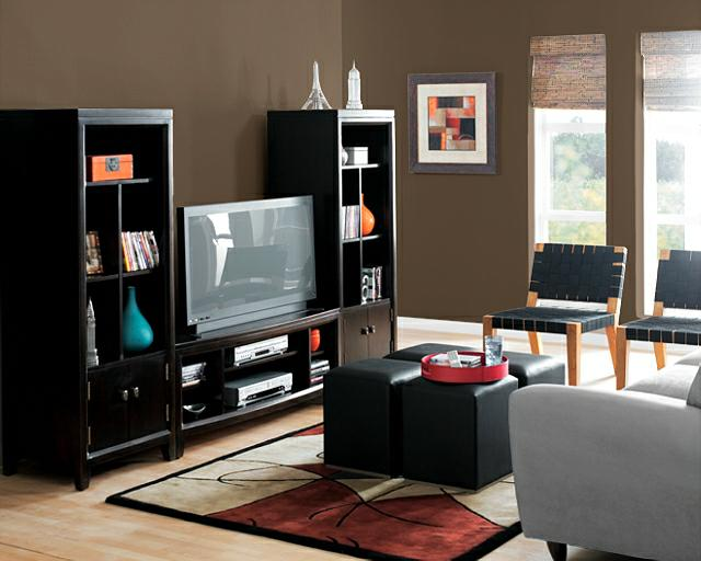Paint Colors For Dark Rooms Impressive Of Living Room Paint Color Ideas Photos