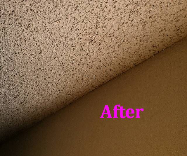 Get Rid Of Mold In Sacramento Apartment