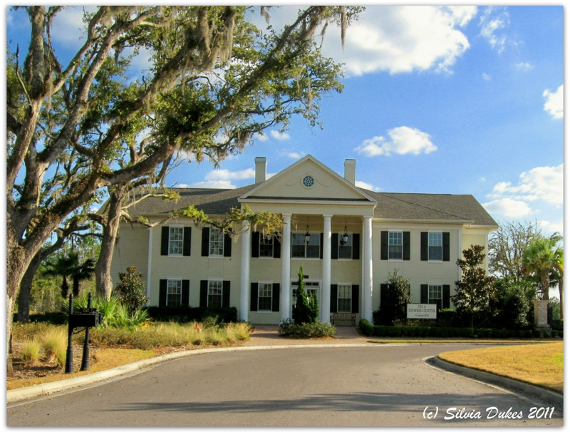 Southern hills plantation club brooksville florida Antebellum plantations for sale