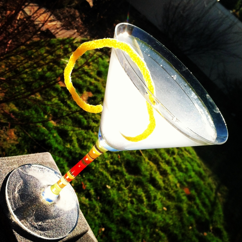 Dry Fly Gin Martini