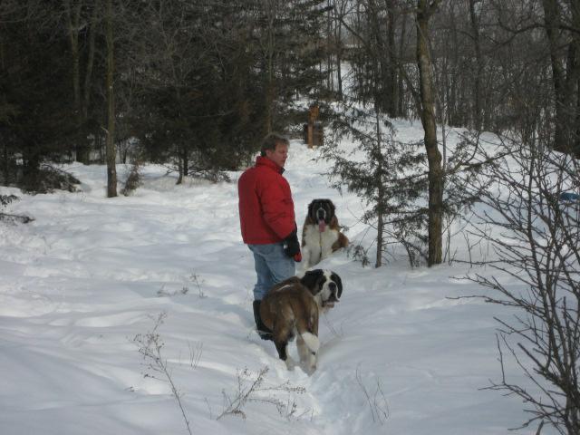 Dog Park in Rosemount, MN