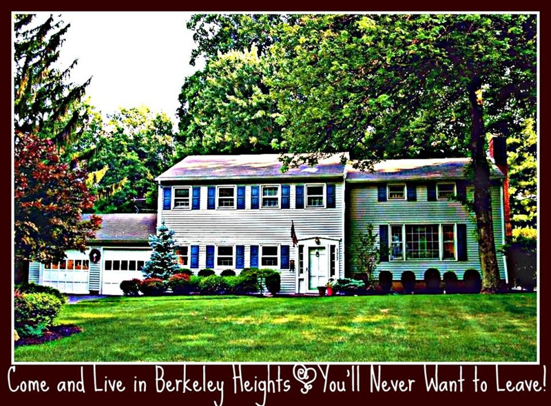 Berkeley Heights NJ Homes