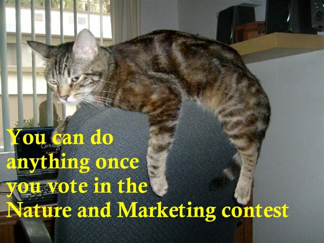 Vote in the Nature & Marketing contest!
