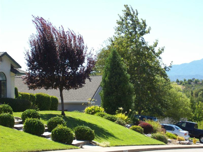 Ridgewood Estates View 2