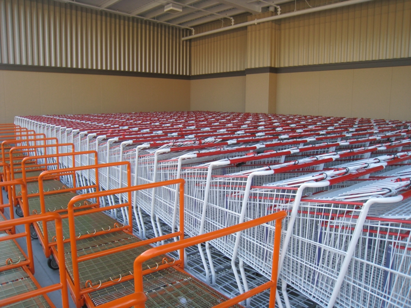 Costco Town Brookhaven Shopping Carts