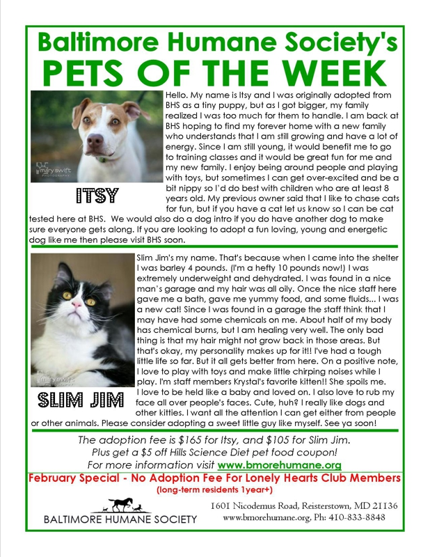 Baltimore Pets of the Week