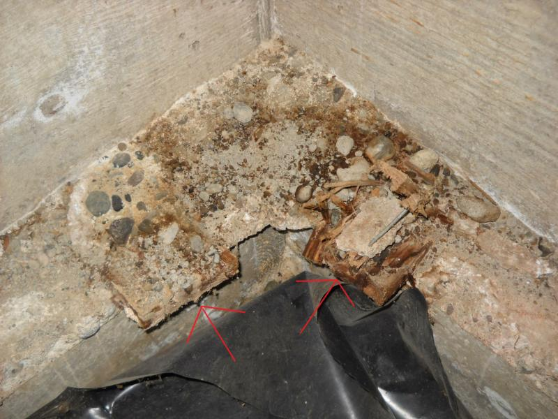 Concrete form wood why removing it from your crawlspace for Stem concrete