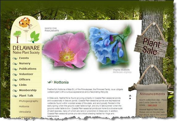 Delaware Native Plant Society Web Page